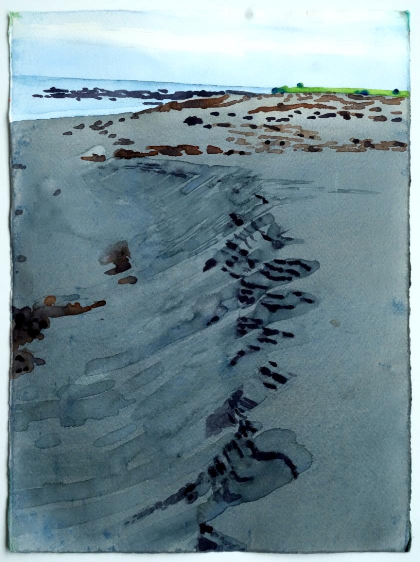 Paua Shells Sand Ripples 2.jpg