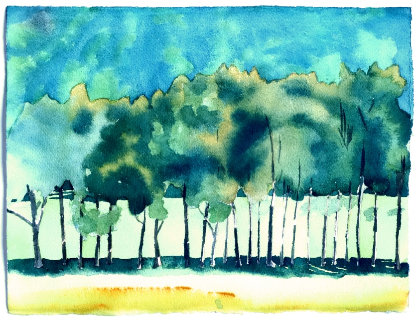 Row of Trees 2